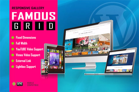 CodeCanyon Famous Responsive Image And Video Grid Gallery