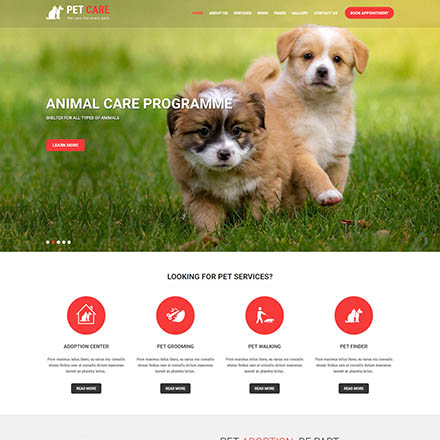 SKT Themes Pet Care Pro