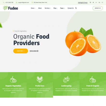 ThemeForest Fudee