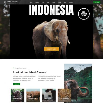 ThemeForest Ngo