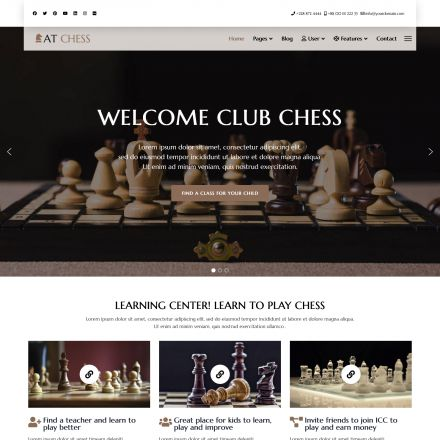 AGE Themes Chess