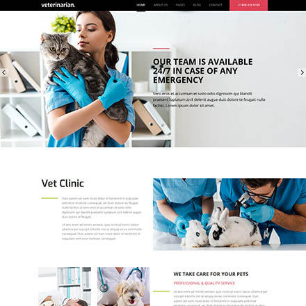 HotThemes Hot Veterinary