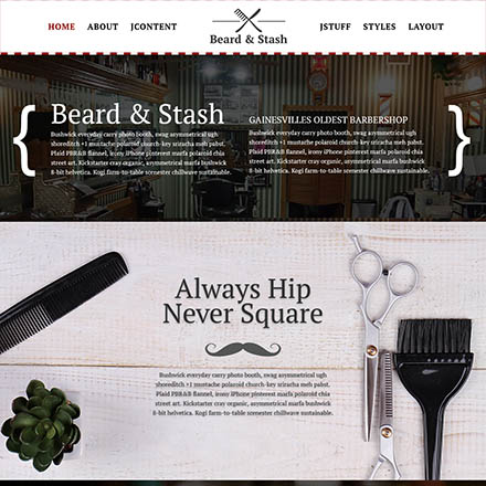 JoomlaXTC Beard & Stash