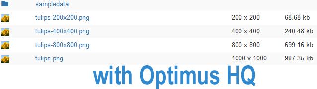 Изображения с оптимизацией